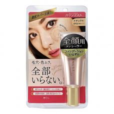 BCL Kakushimust full cover concealer natural SPF 50 PA+++, 25г Корректор для лица c 3D эффектом