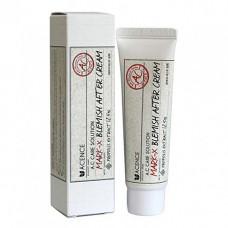 Mizon Acence mark x blemish after cream, 30мл Крем для борьбы с постакне точечный
